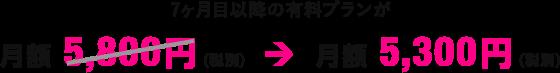 月額 5,300円(税別)